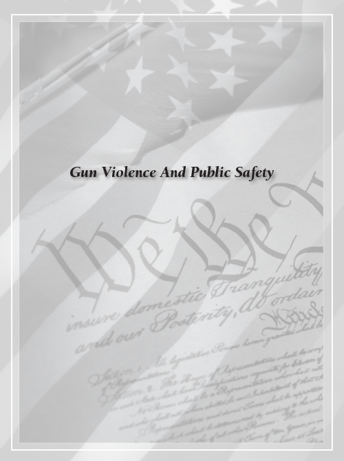 gun violence essay Gun violence in america research papers examine the statisics of the persistent social problem in the united states.